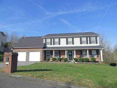 Knoxville Single Family Home For Sale: 11337 Stonebriar Lane
