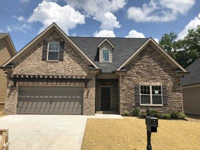 Lenoir City Single Family Home For Sale: 1167 Jacksonian Way Lot 27