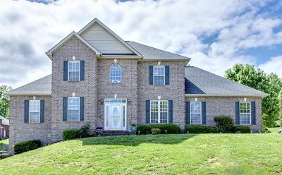 Knoxville Single Family Home For Sale: 2824 Cypress Point