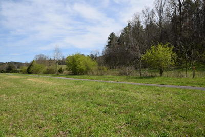 Friendsville, Greenback, Louisville, Maryville, Sevierville, Tallassee, Townsend, Townsend/walland, Vonore, Walland Residential Lots & Land For Sale: E. Lamar Alex Pkwy.
