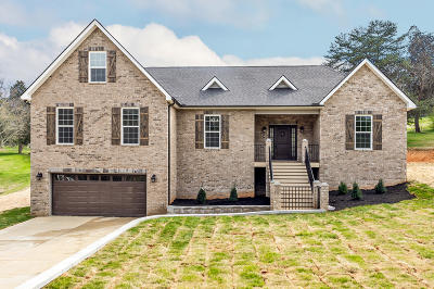 Knoxville Single Family Home For Sale: 4604 Cabbage Ln