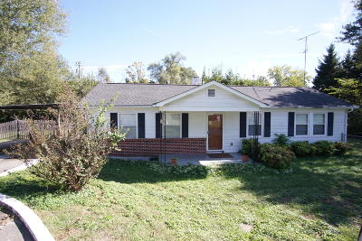 Blount County Single Family Home For Sale: 413 Douglas Ave
