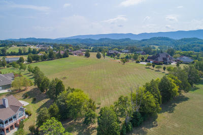 Maryville Residential Lots & Land For Sale: 1569 Mint Meadows Drive