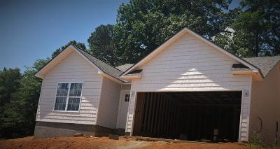 Knoxville Single Family Home For Sale: 3809 Boyd Walters Lane