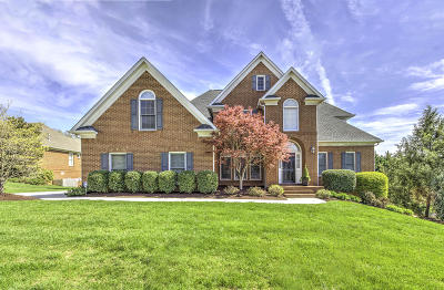 Knox County Single Family Home For Sale: 936 Weatherly Hills Blvd