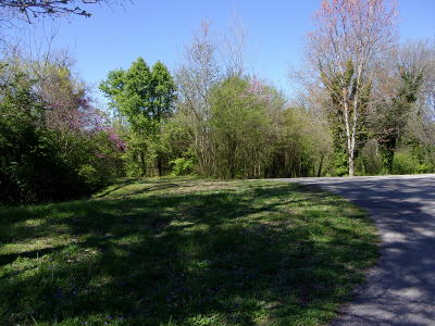 Clinton Residential Lots & Land For Sale: 333 Sunset St