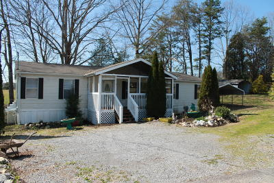 Sevier County Single Family Home For Sale: 4345 Diamond Valley Rd