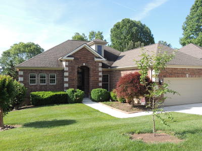 Single Family Home For Sale: 249 Coyatee Shores