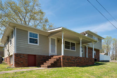 Anderson County Single Family Home For Sale: 128 Outer Drive