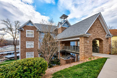 Anderson County Condo/Townhouse For Sale: 241 Pinnacle Point