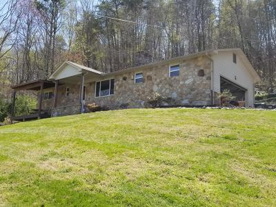 Lenoir City Single Family Home For Sale: 2173 Lakeside Drive