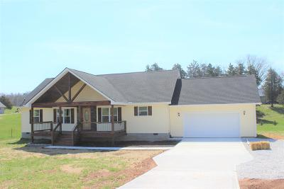 Caryville, Jacksboro, Lafollette, Rocky Top, Speedwell, Maynardville, Andersonville Single Family Home For Sale: 1299 Towe String Rd