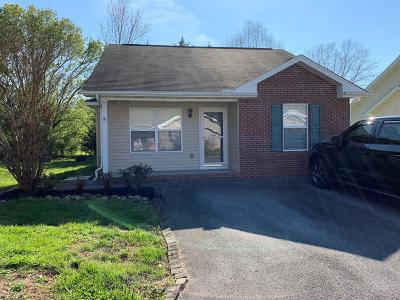 Sevier County Single Family Home For Sale: 1518 River Colony Court