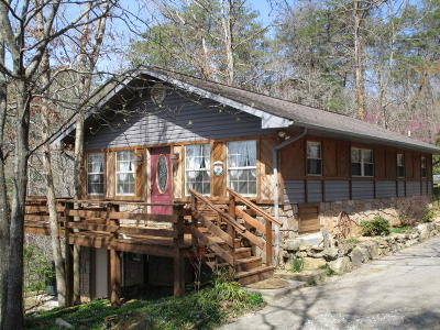 Grainger County Single Family Home For Sale: 434 Henry Clark Lane