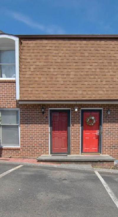Knoxville Condo/Townhouse For Sale: 948 Piney Grove Church Rd #Apt 4