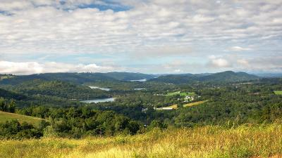 Rock Harbor, Rock Harbor Ii Sect I, Rock Harbor Ii Sect Iii A, Rock Harbor Ii Sect Iii B, Rock Harbor, Norris Lake, Rock Harbor Ii Section 1, Rock Harbor Phase 1 Residential Lots & Land For Sale: 298 Smokey Quartz Blvd