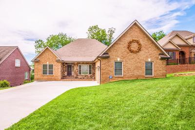 Lenoir City Single Family Home For Sale: 998 Britts Drive