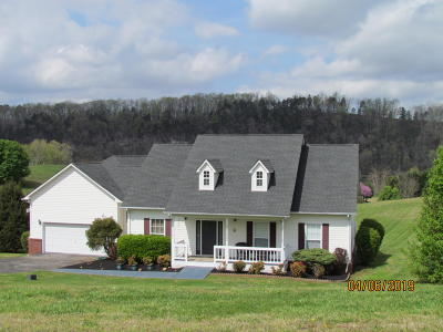 Kingston Single Family Home For Sale: 338 Marble Bluff Drive Drive
