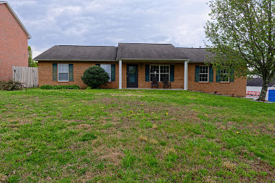 Corryton Single Family Home For Sale: 7101 Majors Landing Lane