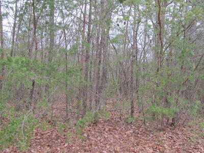 Fairfield Glade Residential Lots & Land For Sale: 12 Forman Court