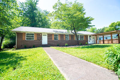 Blount County Single Family Home For Sale: 206 Miller Ave