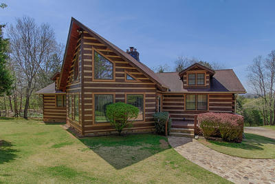 Loudon Single Family Home For Sale: 809 Westshore Drive