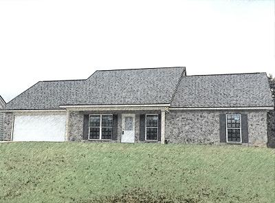 Blount County Single Family Home For Sale: 1607 Griffitts Blvd