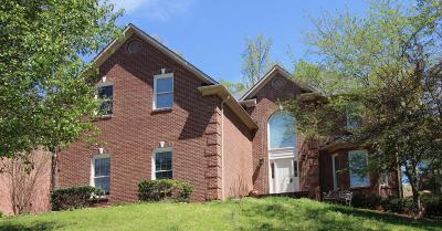 Knoxville Single Family Home For Sale: 10604 Summit Mountain Court