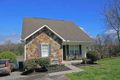Sevierville Single Family Home For Sale: 1118 Ernest McMahan Rd