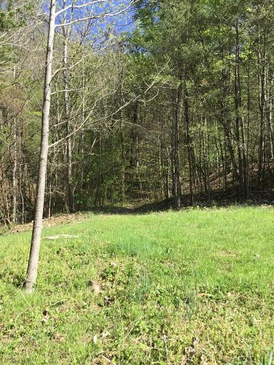 Anderson County Residential Lots & Land For Sale: 16 E Pinnacle Way