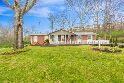 Knoxville Single Family Home For Sale: 212 Norfolk Drive
