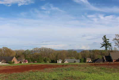 Greenback Residential Lots & Land For Sale: 1128 Houston Springs Rd