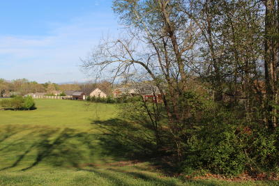 Greenback Residential Lots & Land For Sale: 1140 Houston Springs Rd