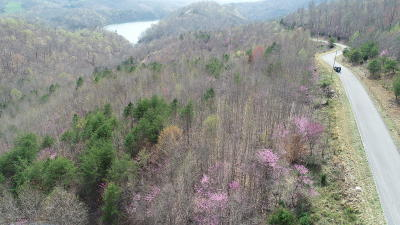 Claiborne County Residential Lots & Land For Sale: Lot 713 Whistle Valley Rd