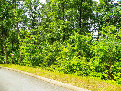 Sevierville Residential Lots & Land For Sale: Lot# 174 Hawks Nest Way