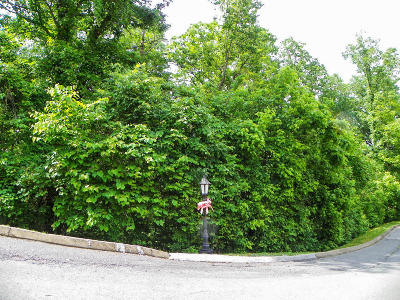 Sevierville Residential Lots & Land For Sale: Lot# 173 Hawks Nest Way