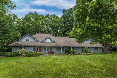 Knoxville Single Family Home For Sale: 1919 Chestnut Grove Rd
