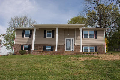 Blount County Single Family Home For Sale: 2933 Big Bend Drive