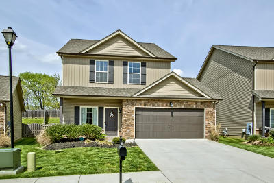 Knoxville Single Family Home For Sale: 2735 Silent Springs Lane