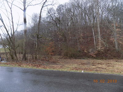 Anderson County Residential Lots & Land For Sale: Brushy Valley Rd