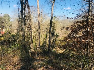 Sevierville Residential Lots & Land For Sale: Big Chiefs Skyview - Lot #81 Drive
