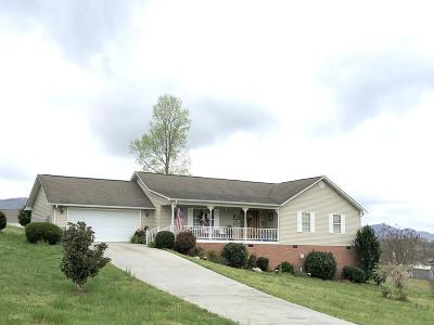 Caryville, Jacksboro, Lafollette, Rocky Top, Speedwell, Maynardville, Andersonville Single Family Home For Sale: 176 Far View Circle