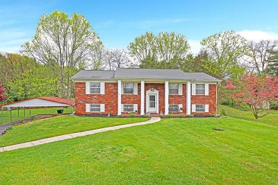 Knoxville Single Family Home For Sale: 9009 Stately Circle