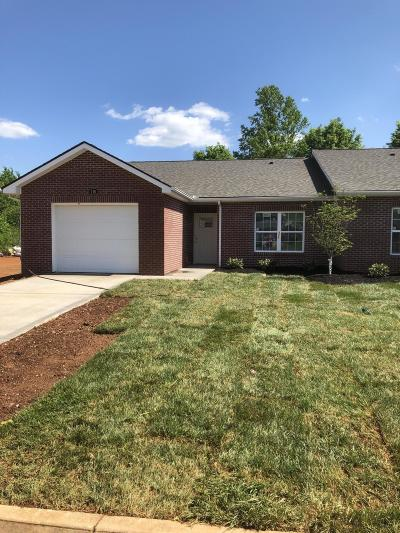 Knoxville Single Family Home For Sale: 716 Spring Park Rd