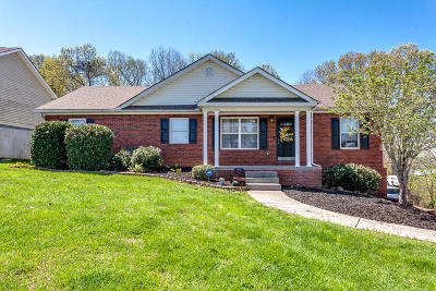 Anderson County Single Family Home For Sale: 4026 Mountain Vista Rd