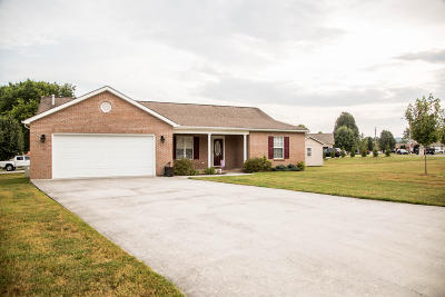 Anderson County Single Family Home For Sale: 102 Elizabethton Way