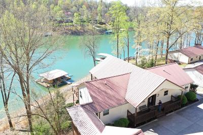 Caryville, Jacksboro, Lafollette, Rocky Top, Speedwell, Maynardville, Andersonville Single Family Home For Sale: 241 Big Pine Point
