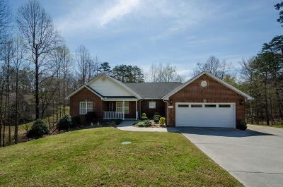 Sevierville Single Family Home For Sale: 1341 Deer Meadows Rd