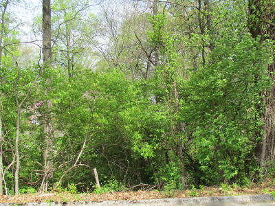 Knoxville Residential Lots & Land For Sale: Culpepper Rd