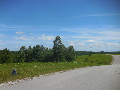 Residential Lots & Land For Sale: Vista View Pwky Lot 61